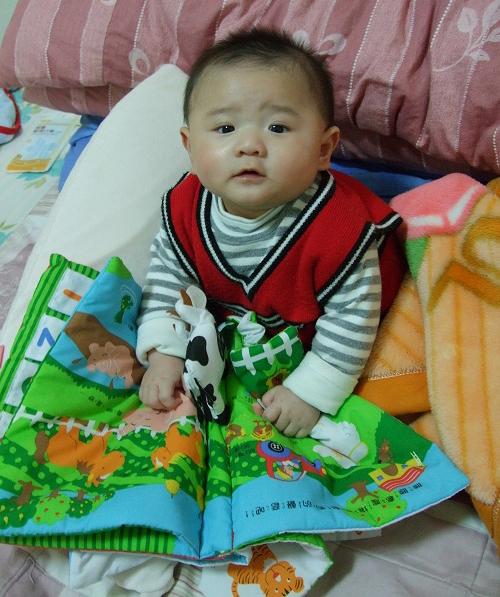 寶寶正在玩趣味有聲動物布書
